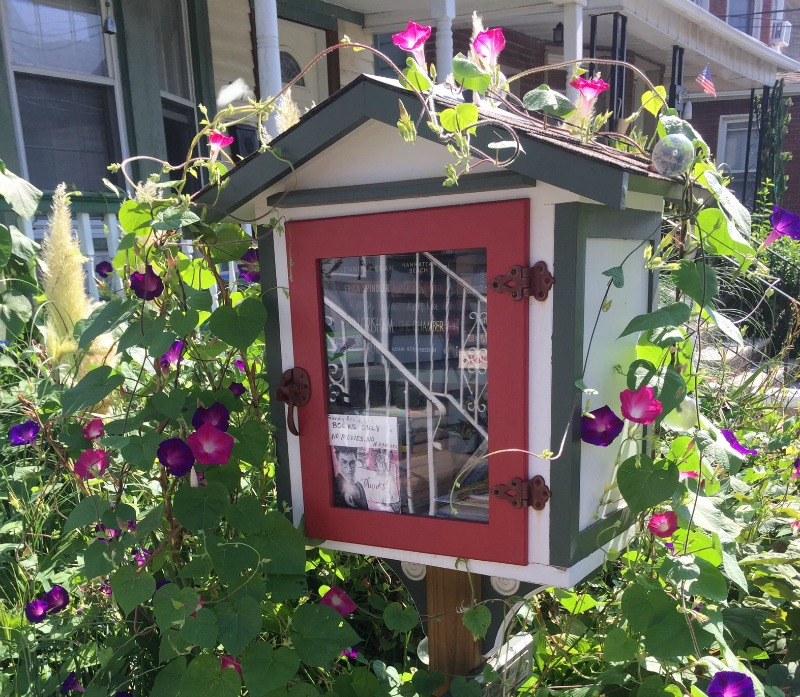 Little Free Libraries: Pet Projects or Literacy Tools?